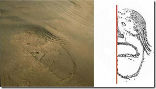 Fig 15 Caral Geoglyph Human Face