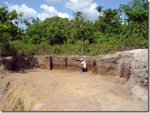 Fig Terra Preta mounds
